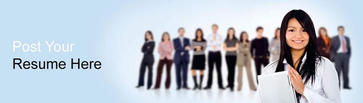 job consultant in dehradun upload resume